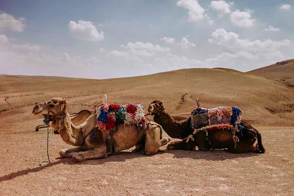 desierto cerca marrakech agafay
